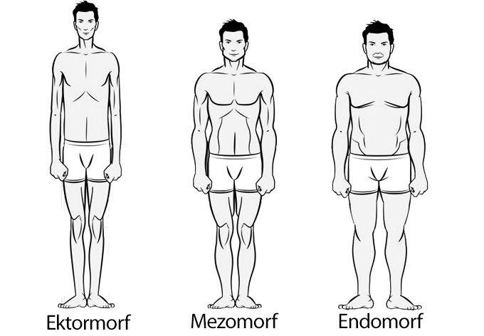 Endomorf Diyeti Nedir?