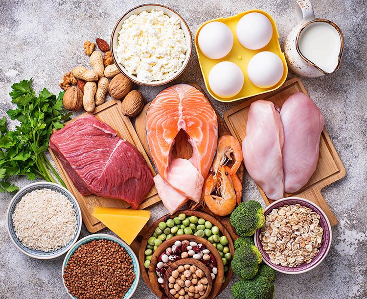Protein Zengini Besin