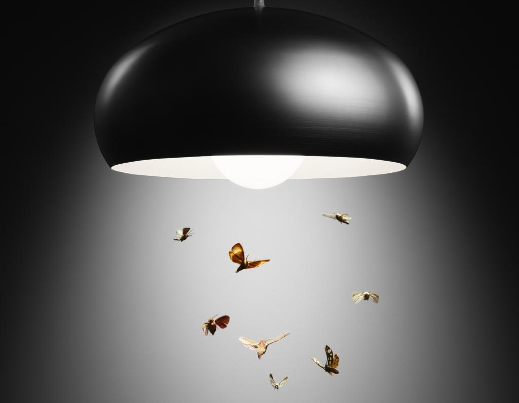 Böcekler Neden Işıktan Hoşlanmıyor ? Böcekler neden ışıktan hoşlanmaz sorusu çoğu zaman merak edilen bir konu oluyor. GünüAmüzde kullanılan ışıklar insanlar için faydalı olabilir. Ancak hayvanlar için ışık pek faydalı değil. Hatta günümüzde ışıklar yüzünden kuş ölümleri meydana geldiği biliniyor. Geceleri evlerde kullanılan ışıklar böcekler için iyi bir seçenek değildir. Hatta günümüzde pek çok ülkede bu durum göz ardı edilmez. Almanya bu ülkeler içerisinde yerini alıyor. Ülkelerde sokak lambası kullanımı bile yasak kabul ediliyor. Bu önlemlerin alınmasının temel nedeni ise böcekleri korumak oluyor. Işık Böcekleri Tehdit Ediyor Işık böcekleri tehdit ediyor, böcekler yapısı gereği genellikle gece aktif bir yaşam sürdürür. Karanlık olduğunda etrafı daha kolay görürler. Fakat bu görüntü yeteneği ışığa karşı aynı olmuyor. Böceklerin çeşitli ışık kaynakları ile karşılaşması onların ölmesi anlamına gelir. Işıklar böcekler hayatlarını tehdit eder. Çoğu zaman böceklerin ışıklara çarptığını görmüşsünüzdür. Bu durum aslında böcekler için anı bir ölüm olarak ifade edilir. Mevcut ışıklar aslında böcekler için bazı anlamlar taşır. Örneğin yemek bulunması gibidir. Ancak ortamda bulunan ışıklar aslında bir nevi tuzaktır. Işıktan etkilenerek böcekler ışığa gelir. Işığın bu yarattığı olumsuzluk pek çok bilim insanı tarafından da incelenmiştir. Elde edilen sonuçlar doğrultusunda ise bazı böceklerin çiftleşme durumunu dahi bozduğu ve üremesini düşürdüğü belirtilmiştir. Genellikle çok sık karşılaşılan sinekler ve diğer böcek çeşitleri için ışık üremenin yanı sıra beslenme gibi durumlarda oldukça olumsuz etkiler. Oluşturulan ışık kirliliği ile birlikte böceklerin yaşam alanları azalır. Oluşan ışık kirliliği ile birlikte en çok hamam böceği gibi türler etkileniyor ve bulundukları alan terk ediyor. Bu durum böylece böceklerin yaşam kalitesini oldukça düşürüyor. Işıkların Çekici Özelliği Işıkların çekici özelliği olduğu için yaşam alanları tehdit edilse de mevcut parlak alanlarda böcekleri
