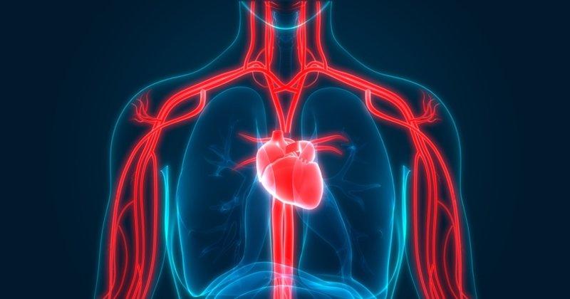 Nitrik oksit nedir, faydaları nelerdir?