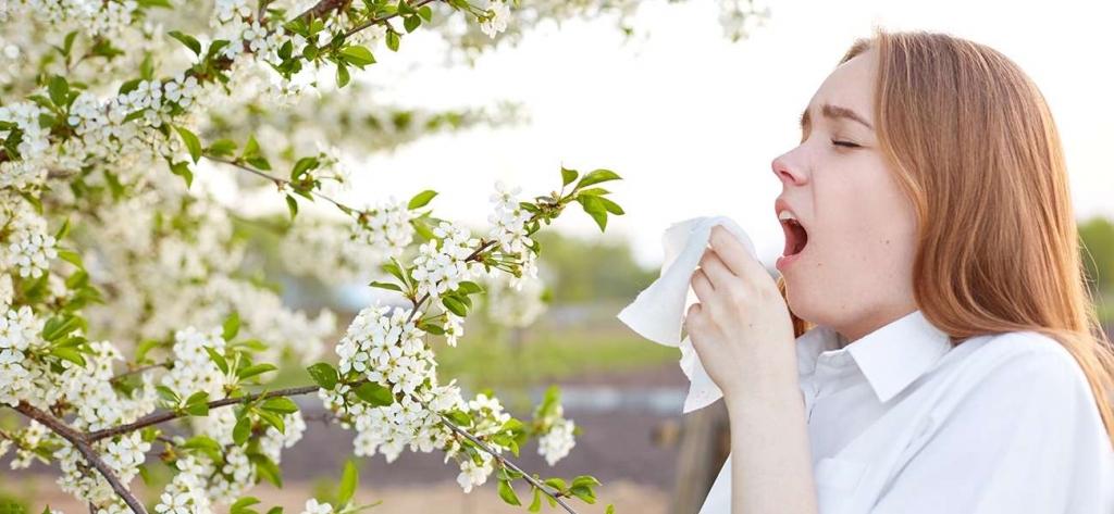Alerjik Rinit (Saman Nezlesi) Nedir? Belirtileri Ve Tedavisi