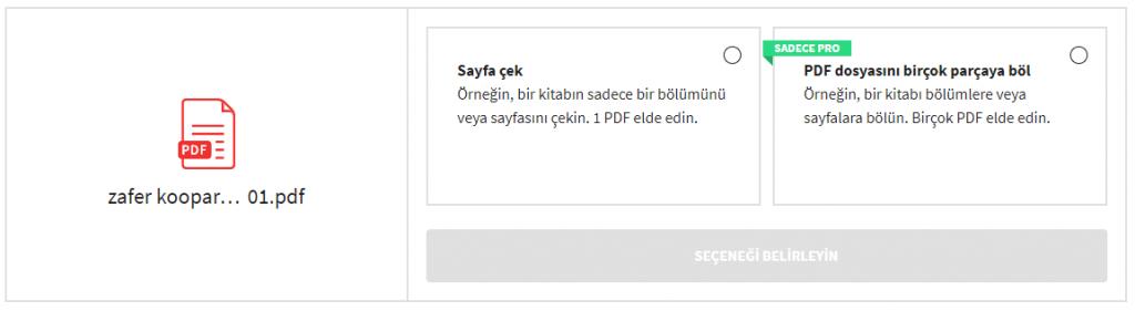 PDF'yi Nasıl Sayfalara Bölersiniz? Programsız