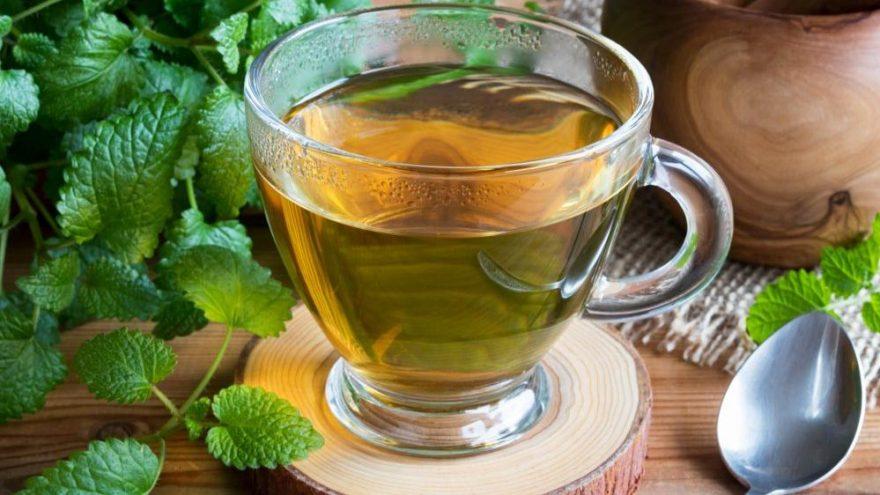 Melisa Çayı Nedir, Nasıl Demlenir?