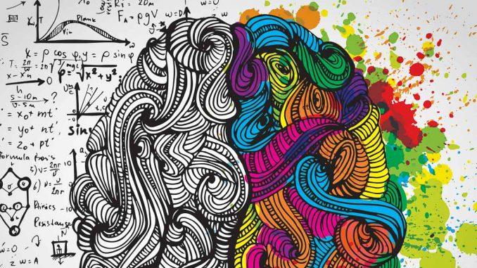 Psikoloji Alt Dalları Nelerdir?